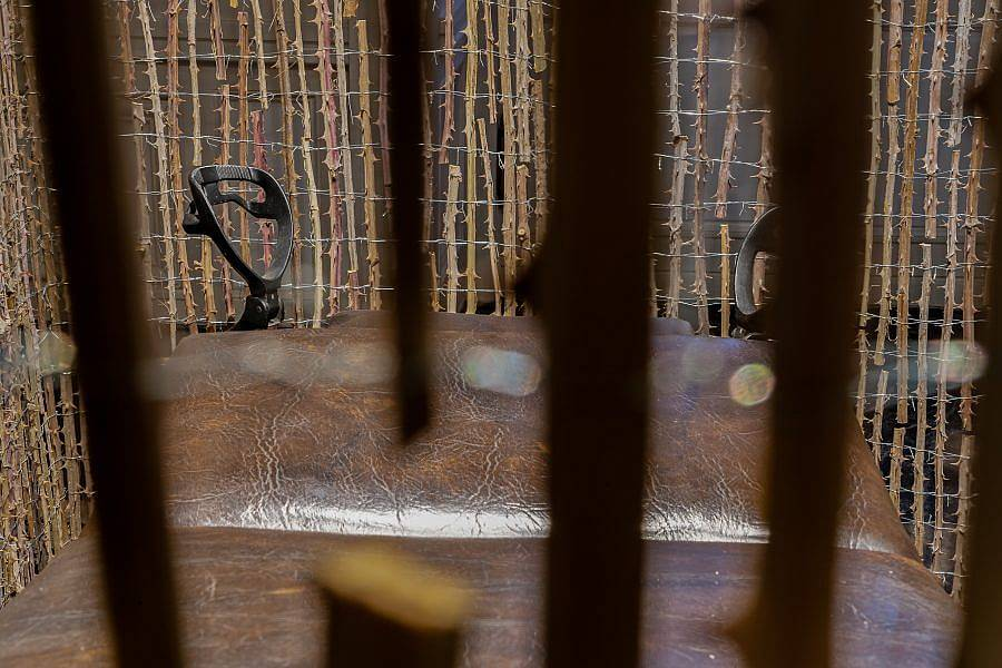 Photograph through a see-through curtain made of thorns. A stirrup is visible, and the brown leather medical gynecological table is visible. The curtain of thorns is visible beyond the stirrups.