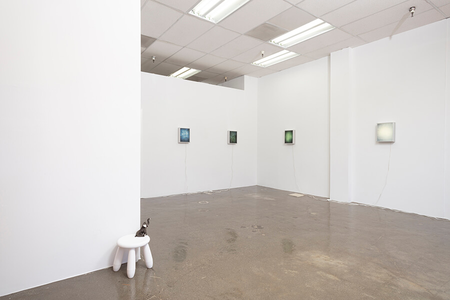 """image description: This photograph features an installation view of Ellen Schafer's solo exhibit titled """"Simplicity"""". There is a white stool with a stuffed elephant on top that is displayed not he floor. There are several other works that appear to be illuminated on the other two walls of the gallery."""